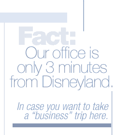 "Fact: Our office is only 3 minutes from Disneyland. In case you wanted to take a ""business"" trip here."