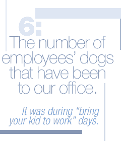 "6: The number of employees' dogs that have been to our office. It was during ""bring your kid to work"" days."